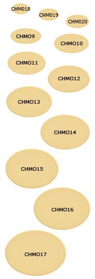 CHMO9-17_187.jpg